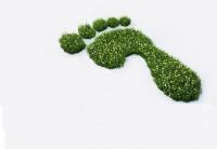 Die Abbildung zeigt einen Fußabdruck aus grünen Grasbüschel.